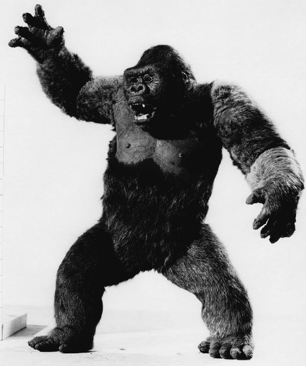 Faleceu Ray Harryhausen | criador do Stop Motion Animation ...