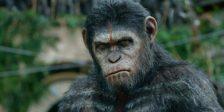 Já foi revelado o novo trailer do terceiro filme da saga intitulado War for The Planet of The Apes, e promete momentos intensos e muitas emoções fortes!