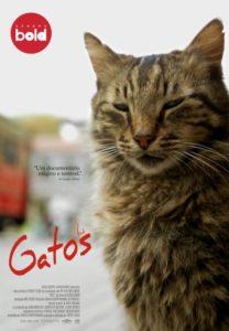 """""""Gatos"""""""
