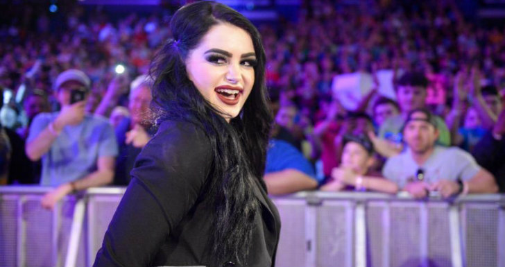 paige wwe fighting with my family