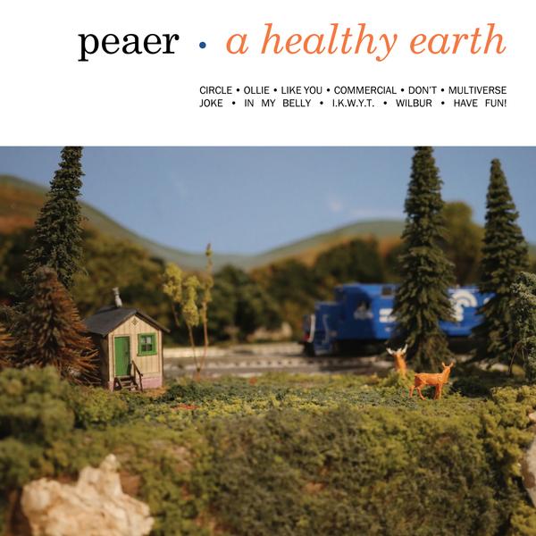 Capa de A Healthy Earth