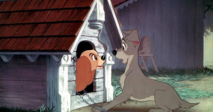a dama e o vagabundo | © Walt Disney Studios
