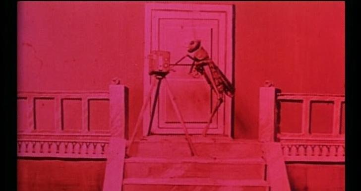 The Cameraman's Revenge - filmes sobre cinema