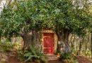 Disney e Airbnb recriam casa de Winnie the Pooh